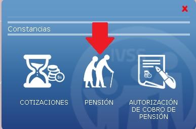Pension IVSS