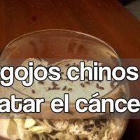 gorgojos chinos cáncer